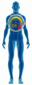 Vitamin szint ellenőrzése, hiánybetegségek, vitaminhiány, D vitamin, Dvitamin, vérvétellel